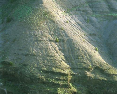 Landschaft nahe Arines, Las Palmas 2002